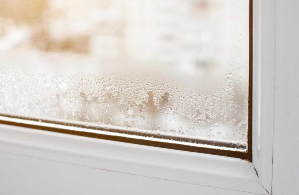 Baytown window repair